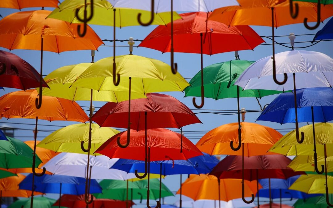 National Umbrella Day.